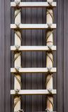 Bamboo Ladder Royalty Free Stock Image