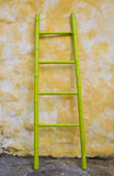 Bamboo ladder. Stock Image
