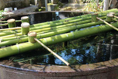 Bamboo ladles were installed for the ablutions in the courtyard of a shintoist temple in Amanohashidate (Japan) Royalty Free Stock Images