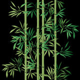 Bamboo leaf background. Floral seamless texture with leaves. Royalty Free Stock Photo