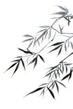 Bamboo leaf vector illustration