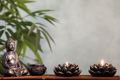 Bamboo leaf in vase Stock Images