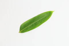 Bamboo leave. S for decoration at the time of the dishing of food and food Royalty Free Stock Photos