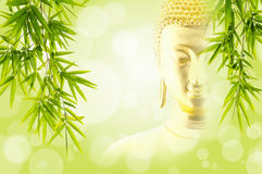 Bamboo leaves with face buddha. Bamboo leaves with fade face buddha on green bokeh background Royalty Free Stock Images