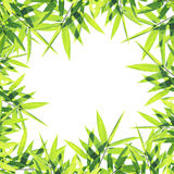 Bamboo Leaves Frame Stock Photography
