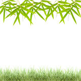 Bamboo leaves frame isolated on white background. Royalty Free Stock Images