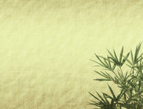 Bamboo leaves on old grunge antique paper Stock Photos