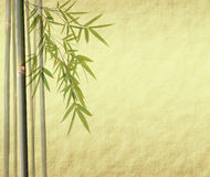 Bamboo leaves on old grunge antique paper Royalty Free Stock Images