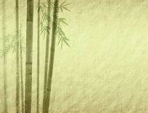 Bamboo leaves on old grunge antique paper. Texture Royalty Free Stock Photo