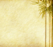 Bamboo leaves on old grunge antique paper. Texture Royalty Free Stock Images