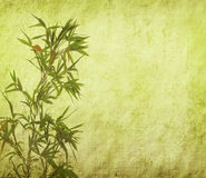 Bamboo leaves on old grunge antique paper Stock Photography