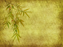 Bamboo leaves on old grunge antique paper Royalty Free Stock Photography