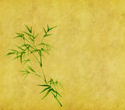 Bamboo leaves on old grunge antique paper. Texture Stock Photos
