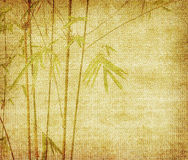 Bamboo leaves on old grunge antique paper. Texture Royalty Free Stock Photography