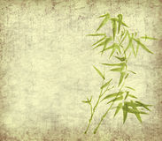 Bamboo leaves on old grunge background Stock Images