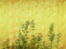 Bamboo leaves on old grunge paper Royalty Free Stock Photo