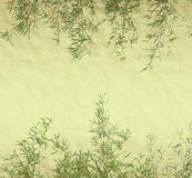 Bamboo leaves on old grunge paper. Bamboo leaves on old grunge antique paper Royalty Free Stock Photo