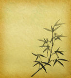 Bamboo leaves on old grunge paper Royalty Free Stock Image