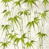 Bamboo with leaves pattern. Stock Images