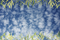 Bamboo leaves with sky background Royalty Free Stock Photos