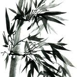 Bamboo with leaves. Watercolor and ink illustration of bamboo. Oriental traditional painting in style sumi-e, u-sin. Artistic illustration stock illustration
