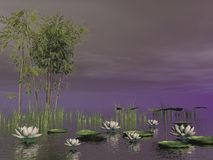 Bamboo and lily flowers - 3D render Stock Image