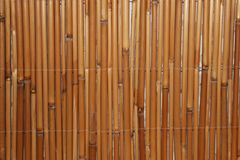 Bamboo limbs in a row. At the wall royalty free stock photography