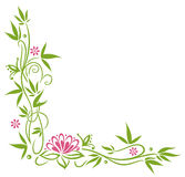 Bamboo, lotus flower. Bamboo with pink blossoms and lotus flower Royalty Free Stock Photo
