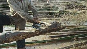 Bamboo, machete, mekong,cambodia, southeast asia stock video footage