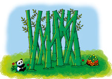 Bamboo maze. Maze:A lovely panda want to eat bamboo shoots through the bamboo forest royalty free illustration