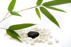 Bamboo meditation Stock Image