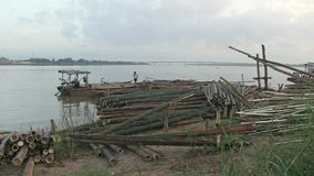 Bamboo, mekong, cambodia, southeast asia stock video footage