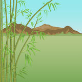 Bamboo and mountains Stock Photo