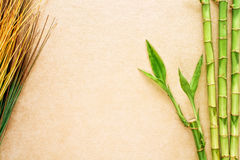 Bamboo and Natural Grass Eastern Decor Background Royalty Free Stock Image