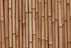 Bamboo old brown wall background Royalty Free Stock Images