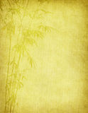 Bamboo on old grunge antique paper. Texture Stock Photography