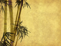 Bamboo on old grunge antique paper Stock Photos