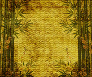 Bamboo on old grunge antique paper. Texture Royalty Free Stock Image