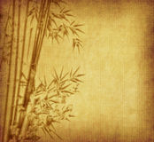 Bamboo on old grunge antique paper. Texture Stock Photos