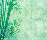 Bamboo on old grunge antique paper Royalty Free Stock Image