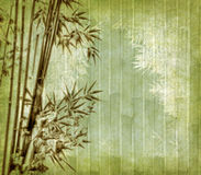Bamboo on old grunge antique paper Stock Image