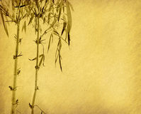 Bamboo on old grunge antique paper Stock Photography