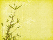 Bamboo on old grunge paper background Royalty Free Stock Photo