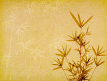 Bamboo on old grunge paper background Stock Image