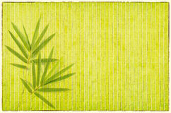 Bamboo on old grunge paper background Royalty Free Stock Photography