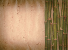 Bamboo old grunge paper texture. Bamboo on old grunge paper texture background Royalty Free Stock Image