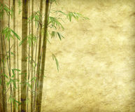 Bamboo on old grunge paper texture. Background Stock Image