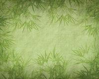 Bamboo on old grunge paper texture. Background Stock Photo