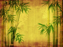 Bamboo on old grunge paper texture. Background Stock Photography