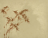 Bamboo on old grunge paper texture. Background Royalty Free Stock Photo